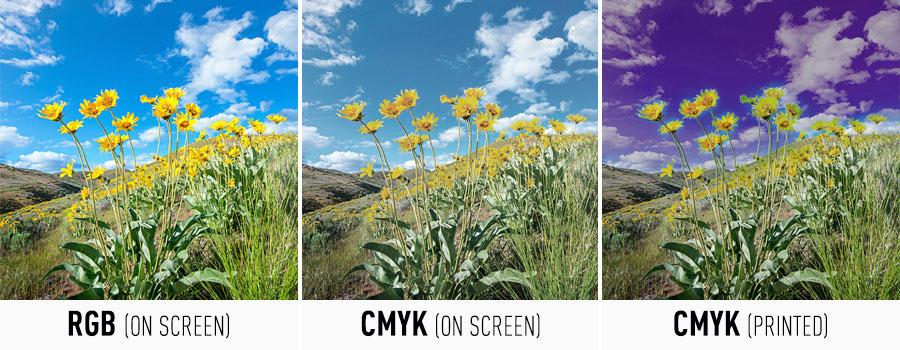 RGB vs CMYK Image